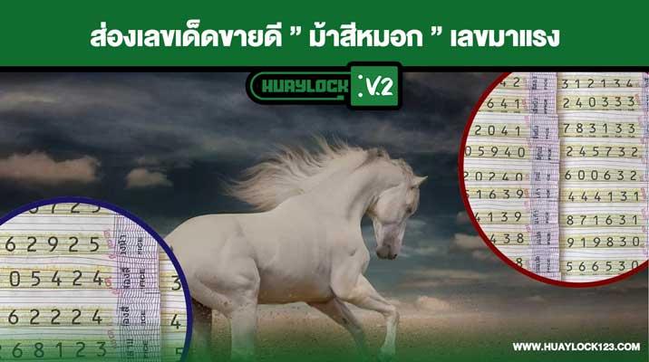เลขม้าสีหมอก 16-7-64